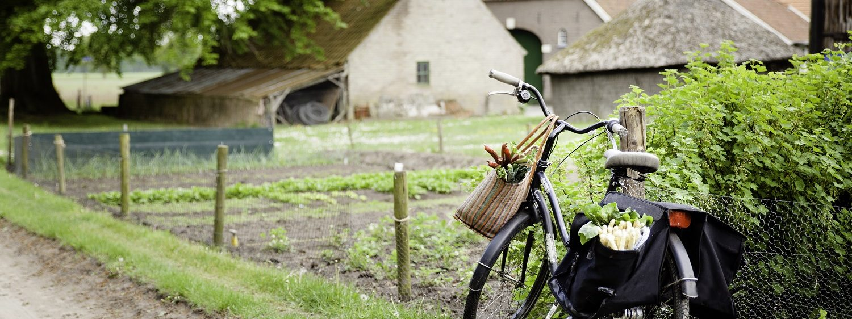 AbelLeisure fietsen